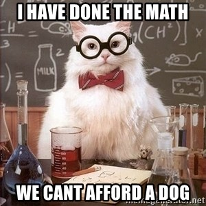 Chemistry Cat - i have done the math we cant afford a dog