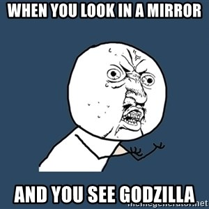 Y U No - When you look in a mirror And you see Godzilla