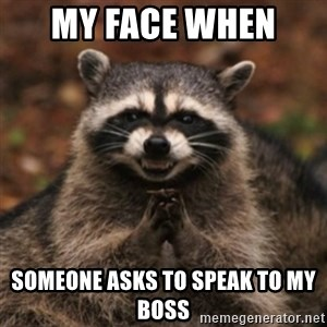 evil raccoon - My face when  someone asks to speak to my boss
