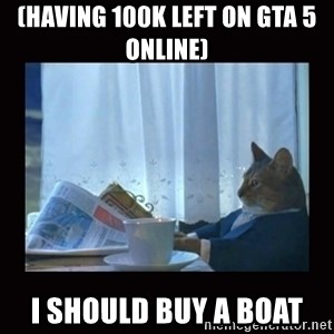 i should buy a boat cat - (having 100K left on GTA 5 online)  I should buy a boat