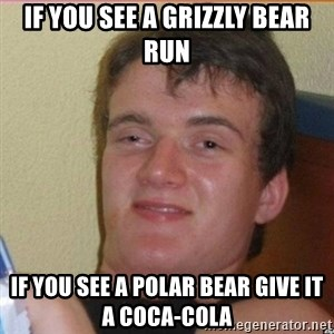 High 10 guy - if you see a grizzly bear run if you see a polar bear give it a coca-cola