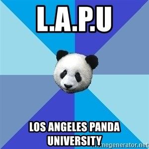 Pit Panda - L.A.P.U Los Angeles Panda University