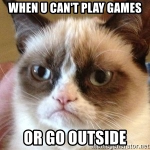 Angry Cat Meme - When u can't play games Or go outside
