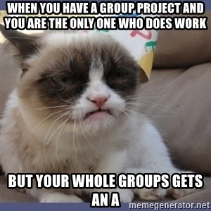 Birthday Grumpy Cat - When you have a group project and you are the only one who does work  But your whole groups gets an A