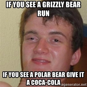 really high guy - if you see a grizzly bear run if you see a polar bear give it a coca-cola