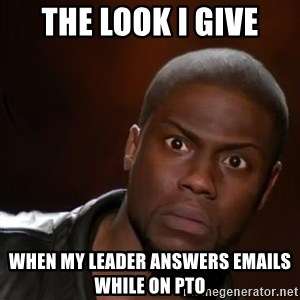 kevin hart nigga - The look I give when my leader answers emails while on PTO