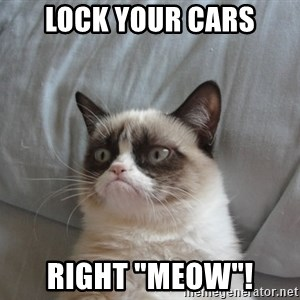 """Grumpy cat good - Lock your cars Right """"Meow""""!"""