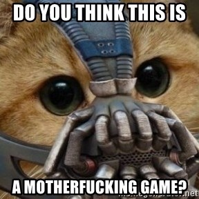 bane cat - DO YOU THINK THIS IS  A MOTHERFUCKING GAME?