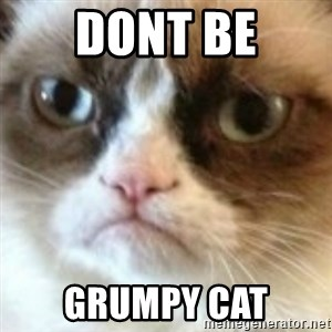 angry cat asshole - Dont Be Grumpy Cat