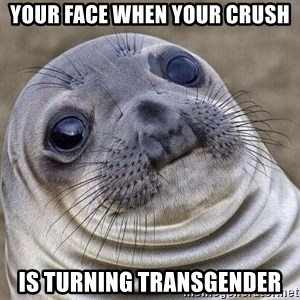 Awkward Seal - Your Face When your crush Is turning transgender