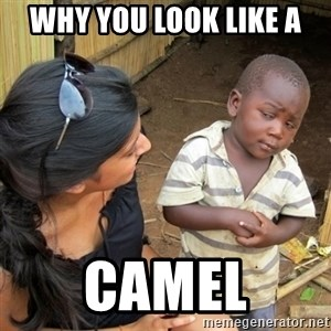 skeptical black kid - why you look like a CAMEL