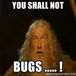 Gandalf You Shall Not Pass - you shall not bugs ..... !