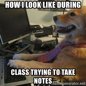 I have no idea what I'm doing - Dog with Tie - How i look like during class trying to take notes
