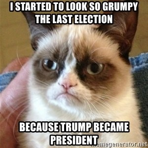 Grumpy Cat  - i started to look so grumpy the last election  because trump became president
