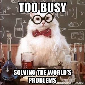 Chemistry Cat - Too busy solving the world's problems
