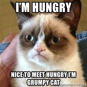 Grumpy Cat  - I'm hungry  Nice to meet hungry I'm  grumpy cat