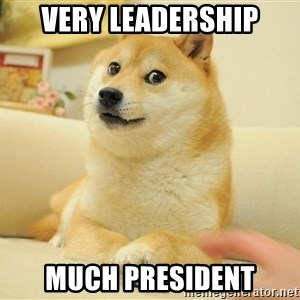 so doge - Very leadership Much president