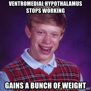 Bad Luck Brian - Ventromedial hypothalamus stops working Gains a bunch of weight