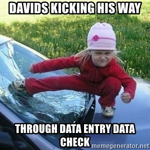 Angry Karate Girl - Davids Kicking his way  through Data Entry Data Check