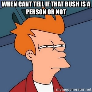 Futurama Fry - when cant tell if that bush is a person or not