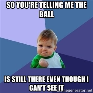 Success Kid - So you're telling me the ball  is still there even though I can't see it