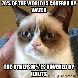 Grumpy Cat  - 70% of the world is covered by water The other 30% is covered by idiots