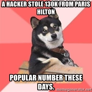 Cool Dog - A hacker stole 130K from Paris Hilton Popular number these days.