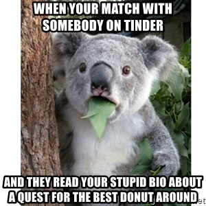 surprised koala - When your match with somebody on tinder  And they read your stupid bio about a quest for the best donut around