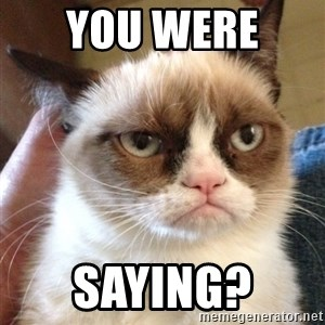 Grumpy Cat 2 - You were  saying?