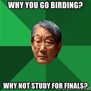 High Expectations Asian Father - Why you go birding? why not study for finals?