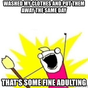 x all the y - Washed my clothes and put them away the same day That's some fine adulting