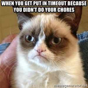Grumpy Cat  - when you get put in timeout because you didn't do your chores