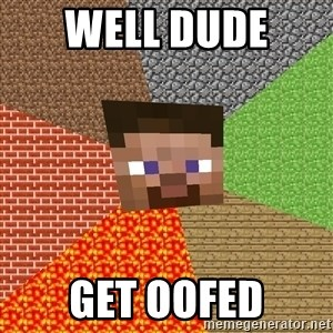 Minecraft Guy - well dude  get oofed