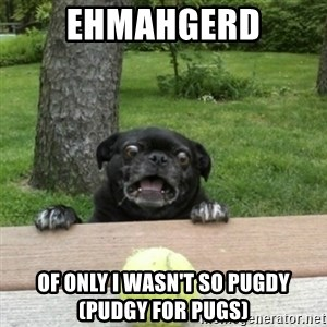 Ermahgerd Pug - EHMAHGERD OF ONLY I WASN'T SO PUGDY (pudgy for pugs)