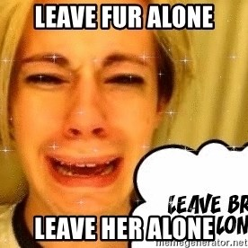 leave britney alone - Leave fur alone LEAVE HER ALONE