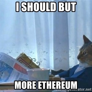 newspaper cat realization - I should but more ethereum