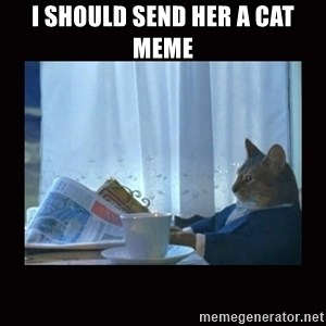 i should buy a boat cat - I should send her a cat meme