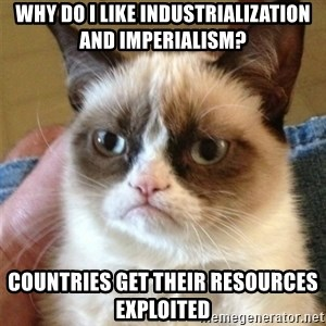 Grumpy Cat  - Why do I like Industrialization and imperialism? Countries get their resources exploited