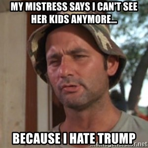 So I got that going on for me, which is nice - my mistress says I can't see her kids anymore... because i hate trump