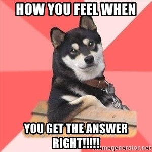 Cool Dog - how you feel when  you get the answer right!!!!!
