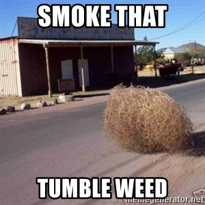 Tumbleweed - smoke that  tumble weed