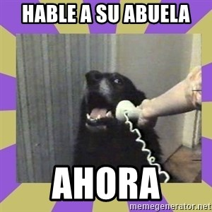 Yes, this is dog! - Hable a su abuela  AHORA