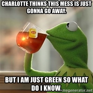 Kermit The Frog Drinking Tea - Charlotte thinks this mess is just gonna go away. But I am just Green so what do I know.