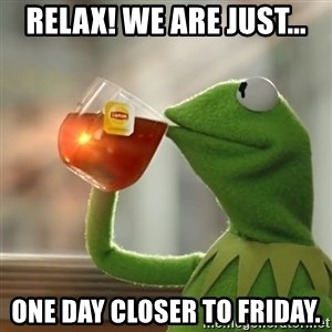 Kermit The Frog Drinking Tea - Relax! We are just... one day closer to friday.