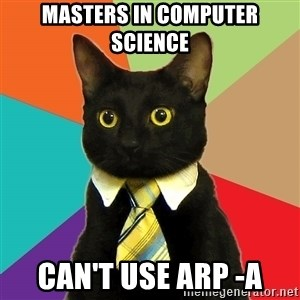 Business Cat - masters in computer science can't use arp -a