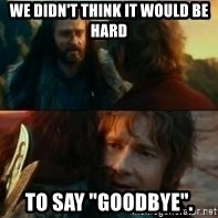 "Never Have I Been So Wrong - We didn't think it would be  hard to say ""goodbye""."