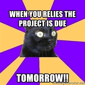 Anxiety Cat - When you relies the project is due TOMORROW!!