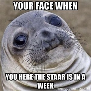 Awkward Seal - Your face when you here the STAAR is in a week