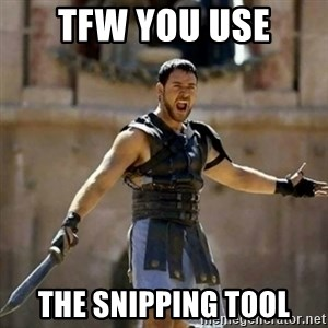 GLADIATOR - TFW you use the snipping tool