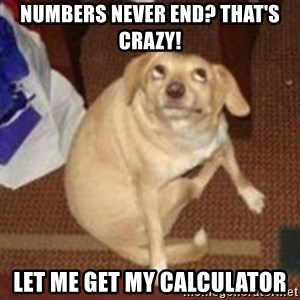 Oh You Dog - Numbers never end? That's crazy! Let me get my calculator